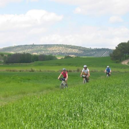 Ruta del Califato, ciclistas de Alcalá la Real a Tózar