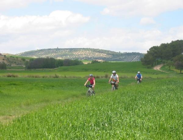 Ruta del Califato en bicicleta, de Alcalá la Real a Tózar