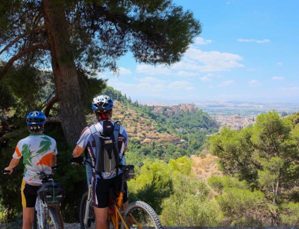 Vista de la Alhambra llegando a Granada