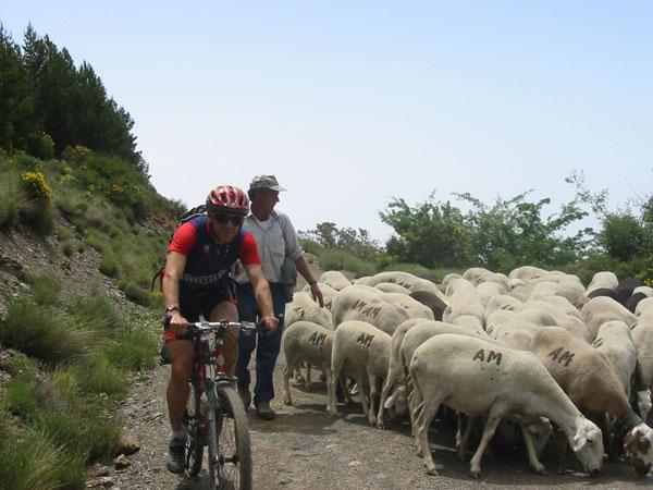 Rutas de senderismo y bicicleta