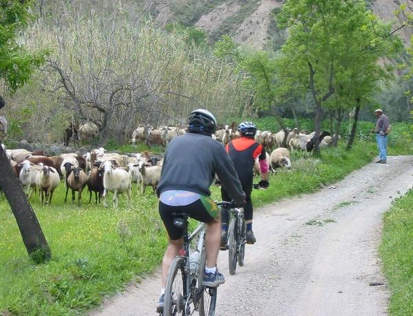 Alpujarra, Paseos de Brenan en bici