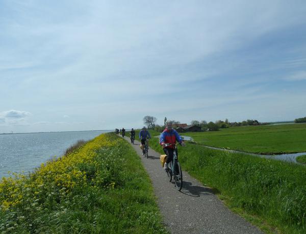 Norte de Holanda y la Isla Texel en barco y bici: Ciclistas en carril bici