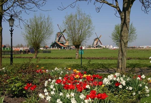 Corazón verde de Holanda en barco y bici: paisaje
