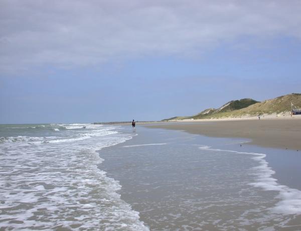 Corazón verde de Holanda en barco y bici: playa