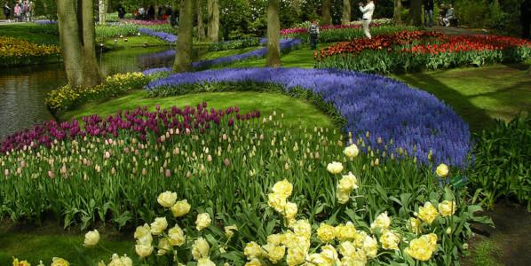 Holanda colorida (Abril-Mayo)