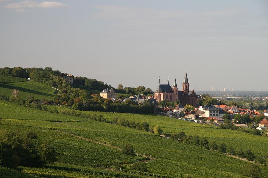 Francia-Alemania: sigue el Rin en bici