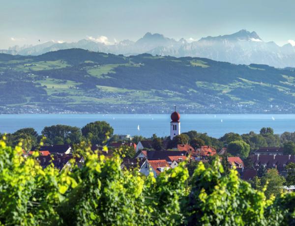Alemania Lago Constanza Vista Alpes