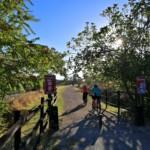 Caminar, montar en bici por la Vía Verde, visitar una Villa Romana….