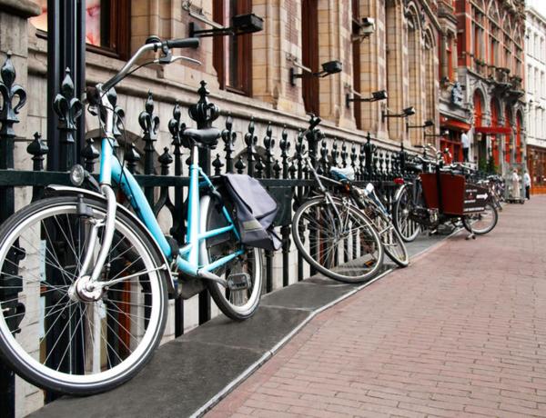 Viaje al Norte de Ámsterdam en barco y bici