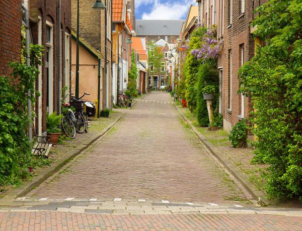 Corazón verde de Holanda en barco y bici: Delft