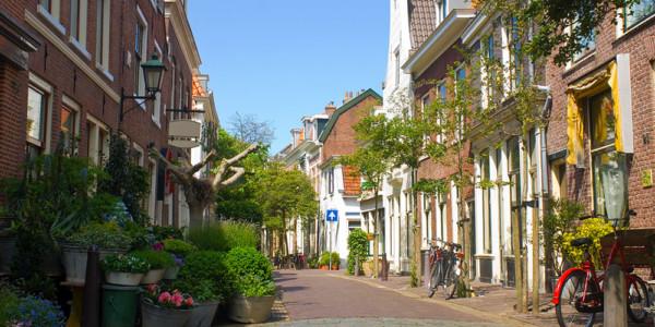 Leiden-Haarlem (37 km)