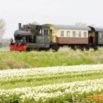 Día 6.  Alkmaar-Purmerend (45 Km)