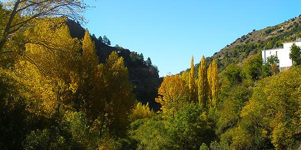 Trevélez-Busquístar (14 km)