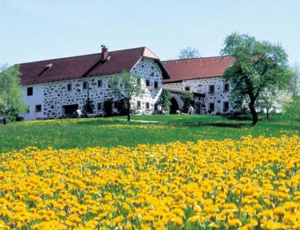Austria: En bici por El Danubio Rural (Schärding-Viena)