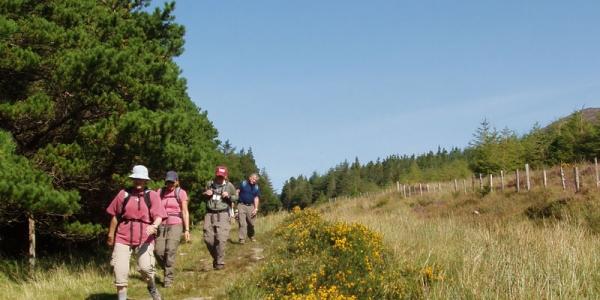 Glenbeigh – Foilmore, 13 km