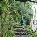 Parque Nacional de Killarney (11 km)