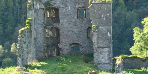 Caherdaniel – Sneem, 17 km