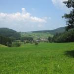 Müllheim/Badenweiler – Friburgo (39-45 km)