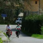 Florencia-Greve in Chianti (44 Km)