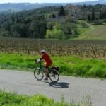 Greve in Chianti – Radda in Chianti (31 Km)