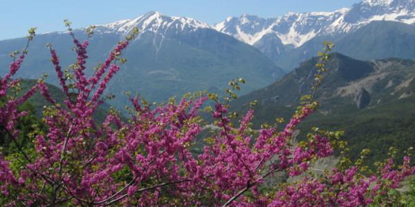 Día 7: Gjirokaster a Sarande (vía Butrint) (70 km, 725 m ascenso)