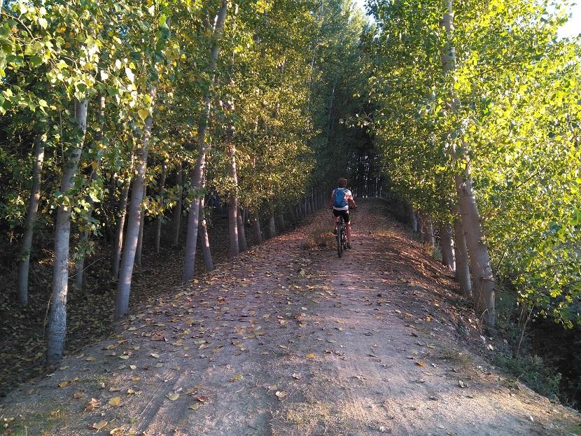 España: Tierras Lorquianas en bici desde Granada