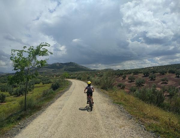 Niño en bici por la Vía Verde del Aceite