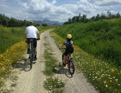 España: en bici por la Vía Verde del Aceite