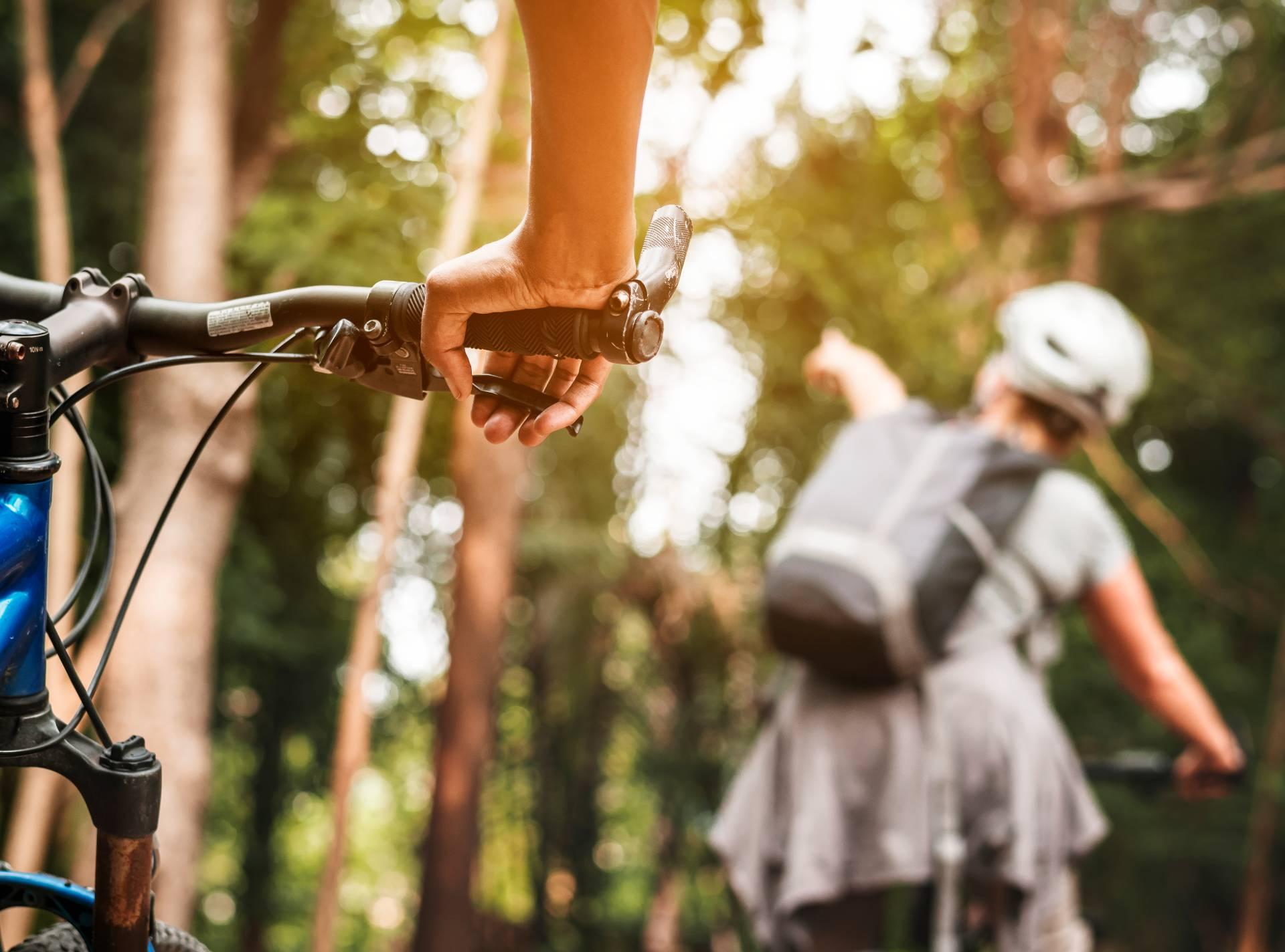 ¿Prefieres el viaje organizado o a tu aire? - Viajes en bicicleta