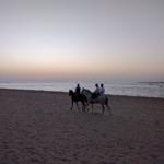 Día 5. Sanlúcar de Barrameda, fin