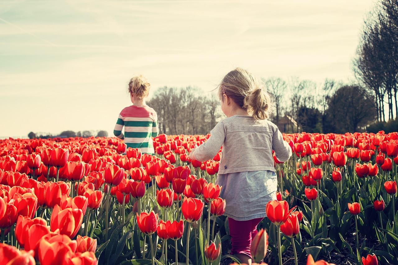 Holanda Niños