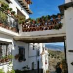 Día 6 Yegen, traslado a Granada